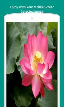 Pink Flowers Wallpapers HD apk screenshot