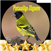 Canto de Pintassilgo icon
