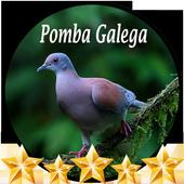 Canto de Pomba Galega icon