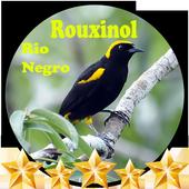 Canto de Rouxinol Rio Negro icon