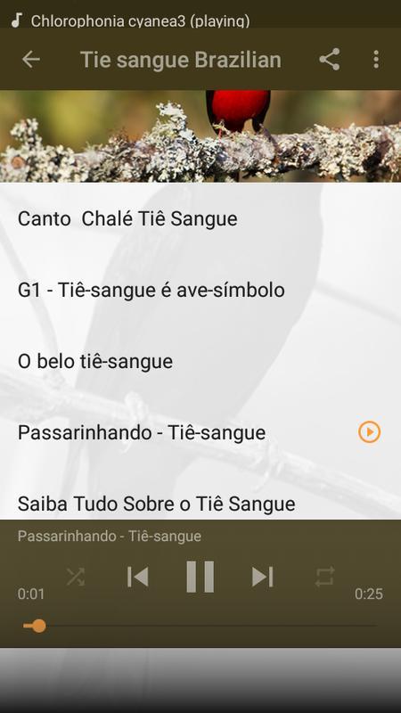 Canto do ti sangue apk download free entertainment app for canto do ti sangue poster ccuart Gallery