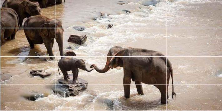 Zoo Animal Puzzle screenshot 1