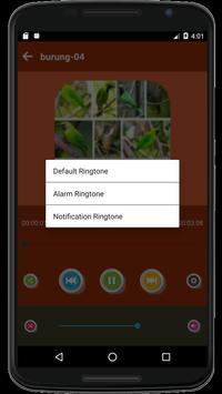 999+ Suara Kicau Burung Pemikat Juara Mp3 Offline screenshot 5