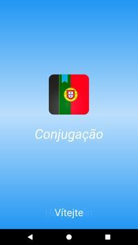 Conjugação português poster