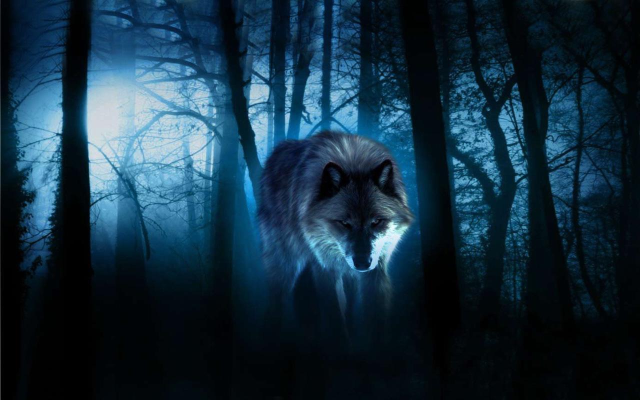 Imagenes De Lobo Para Fondo De Pantalla: Lobos Noche Fondos Pantalla Animadosdos Descarga APK