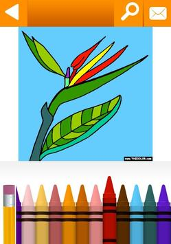 School, Educational Coloring Pages by TheColor.com apk screenshot