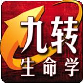 Numerology Enagram icon