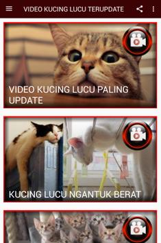 Video Kucing Lucu Paling Update For Android Apk Download