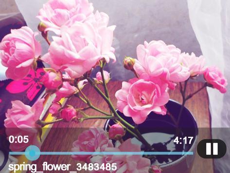 Video Player Ultimate HD apk screenshot