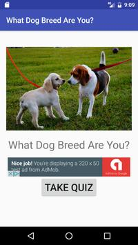 What Dog Breed Are You? poster