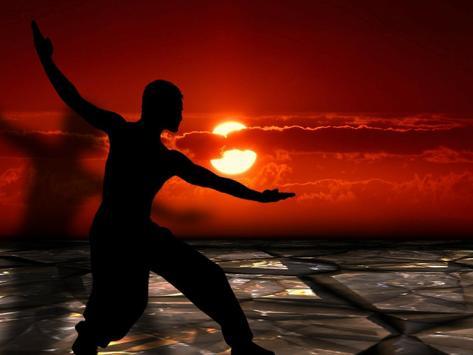 Kung Fu Training & skills poster