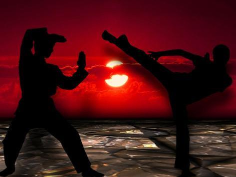 Kung Fu Training & skills screenshot 1