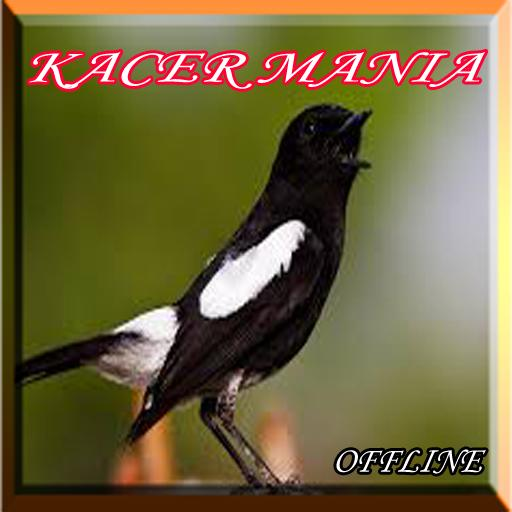 Kacer Mania For Android Apk Download