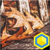 가을벤치 - 카카오홈 테마 icon
