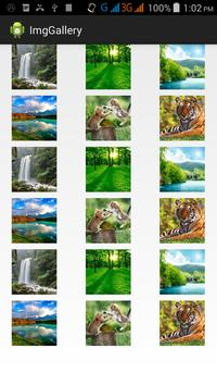 Image Gallery Example apk screenshot