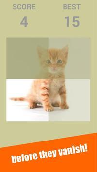 Snapcat : Snap Cat Games screenshot 5