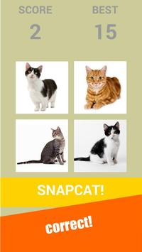 Snapcat : Snap Cat Games screenshot 7