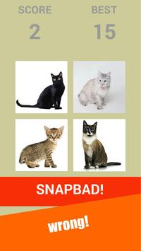 Snapcat : Snap Cat Games screenshot 8