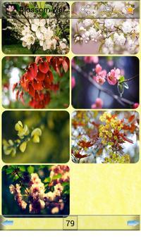 Blossom Wallpapers screenshot 2