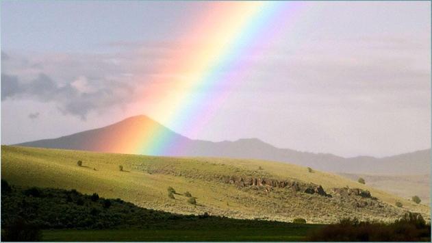 Rainbow Images screenshot 8