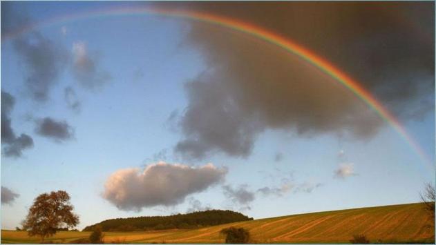 Rainbow Images screenshot 5