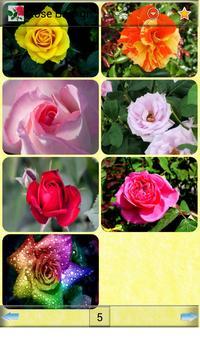 Rose Backgrounds apk screenshot