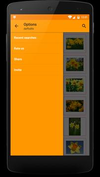 Picture Search and Share apk screenshot
