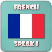 French grammar in use icon