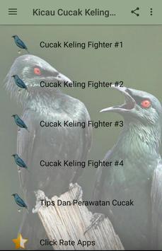 Kicau Cucak Keling Juara poster