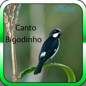 Canto Bigodino icon