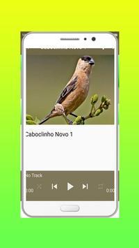 Caboclinho Do Re Mi screenshot 2