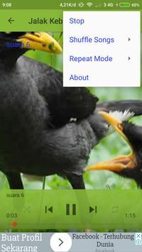 mp3 Burung Jalak Kebo screenshot 2