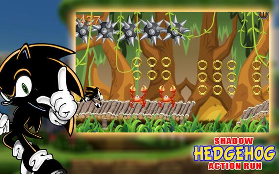 The Shadow Hedgehog Action Run poster