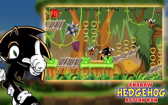 The Shadow Hedgehog Action Run screenshot 4