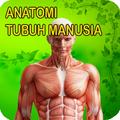 Anatomi Lengkap