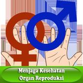 Kesehatan Organ Reproduksi For Android Apk Download
