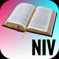 Holy Bible-NIV
