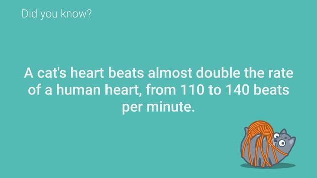 Catrivia TV - Cat Facts apk screenshot