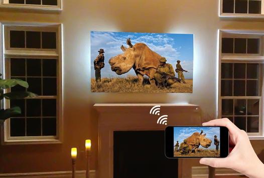 Screen Mirroring with TV screenshot 1
