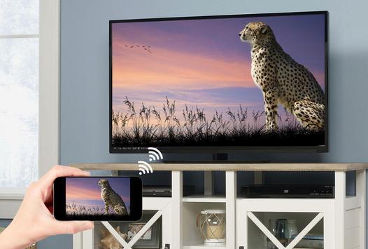 Screen Mirroring with TV screenshot 5