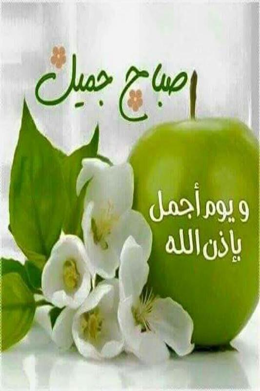 أسعد الله صباحكم ...و .. مساؤكم خيرات . - صفحة 2 Screen-1