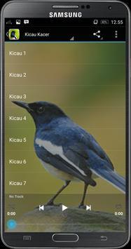 Kicau Master Kacer apk screenshot