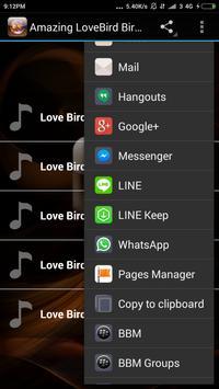 Amazing LoveBird Birds chirp screenshot 2