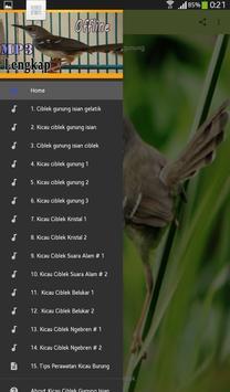 Kicau Burung Ciblek Gunung Isian screenshot 2
