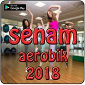 Vidio Senam Aerobic 2018 icon
