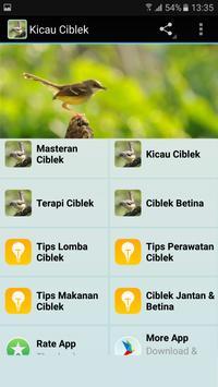 Kicau Master Ciblek Unggulan poster