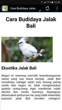 Kicau Master Jalak Bali Gacor screenshot 4