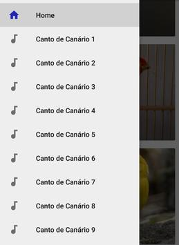 Canto de Canário Belga screenshot 8