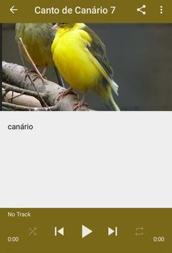 Canto de Canário Belga screenshot 9