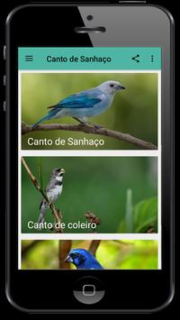 canto de sanhaco screenshot 1